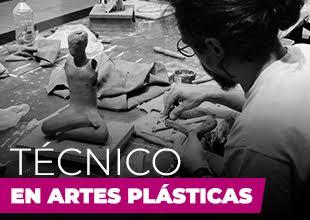 Técnico en Artes Plásticas